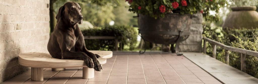 Lettino per cani e gatti, uso sia interno che esterno, made in Italy