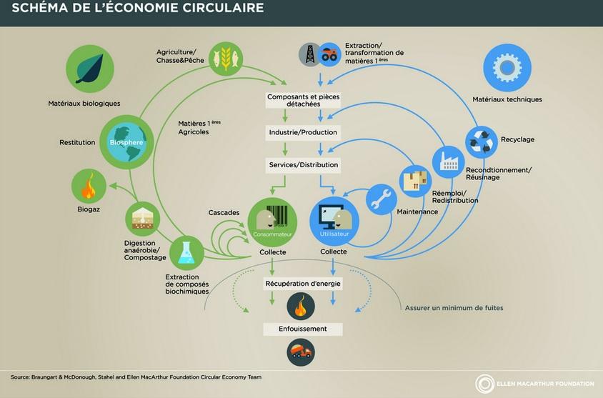 Economia circolare, illustrazione di Ellen Macarthur foundation